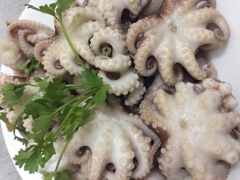 Chúng tôi chuyên cung cấp mực, bạch tuộc khổng lồ đông lạnh giá rẻ – số lượng lớn với chất lượng hàng đầu tại Hà Nội